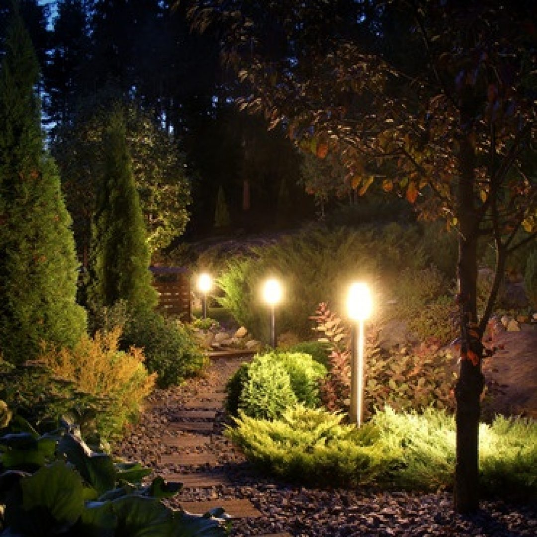 Why Install Landscape Lighting? Why Not!