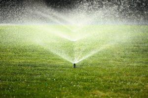 Sprinkler Turn-On Services