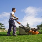 Tips for Saving Time and Money on Lawn Maintenance