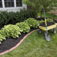 Tips for Maintaining an Eco-Friendly Lawn