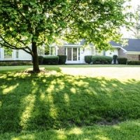 5 Tips for Caring for Grass in Shaded Areas