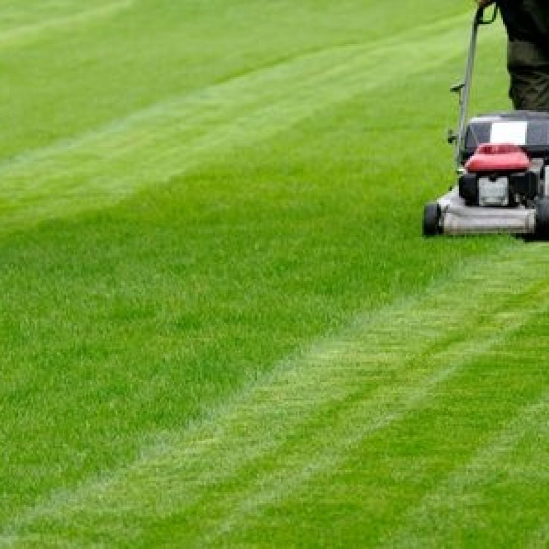 Don't Make These 5 Common Mowing Mistakes