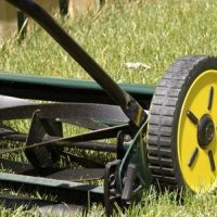 The Unique Virtues of Push Reel Mowers