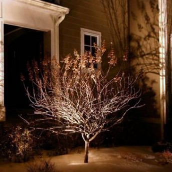 Landscape Lighting in Massachusettes