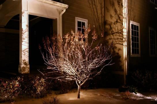 Landscape Lighting in Massachusettes