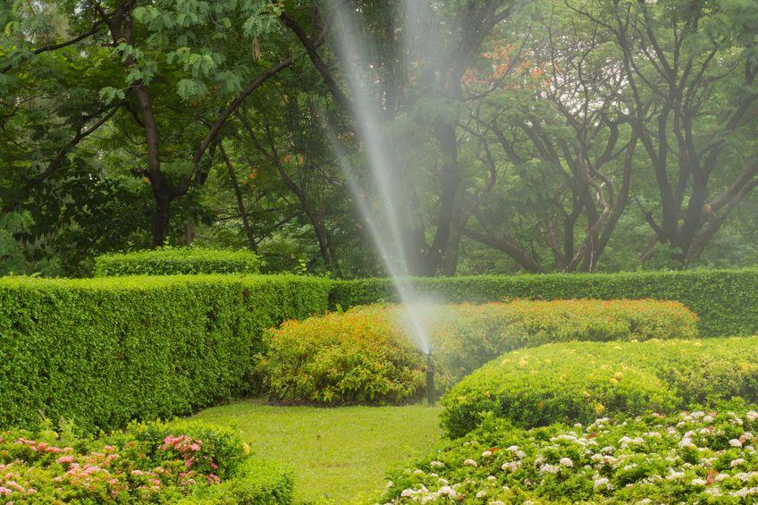 Lawn Sprinkler System in Garden