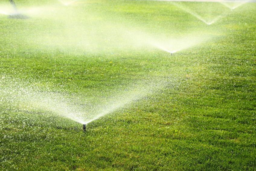 Lawn Sprinkler System in Yard