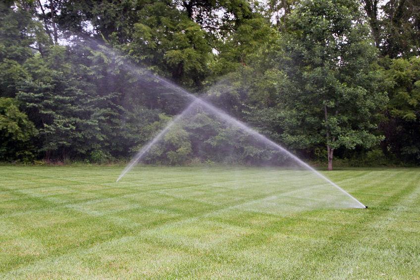 Lawn Sprinklers Watering Green Grass