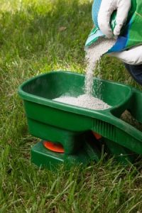 Fall is the Perfect Time to Fertilize