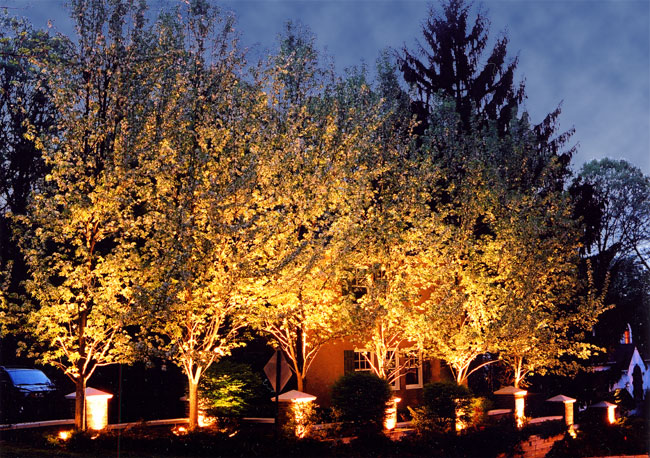 Landscape Lighting Illuminating a Walkway · Trees Illuminated with Landscape Lighting ... & Landscape Lighting Gallery | MA Outdoor Lighting | Suburban Lawn ... azcodes.com