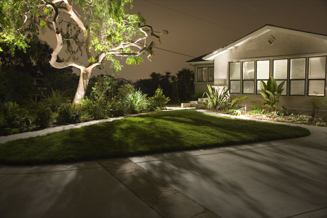 Landscape lighting gallery ma outdoor lighting suburban lawn tree and landscape lighting in ma aloadofball Choice Image