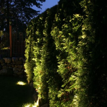 Landscape Lighting in Dover MA
