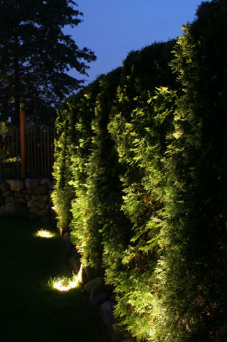 Landscape Lighting in Dover MA
