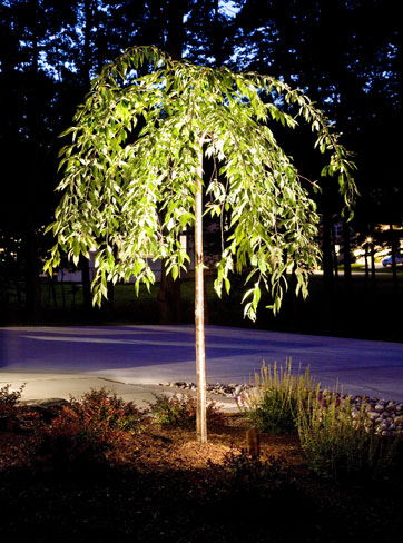 Landscape Lighting for your Home in MA