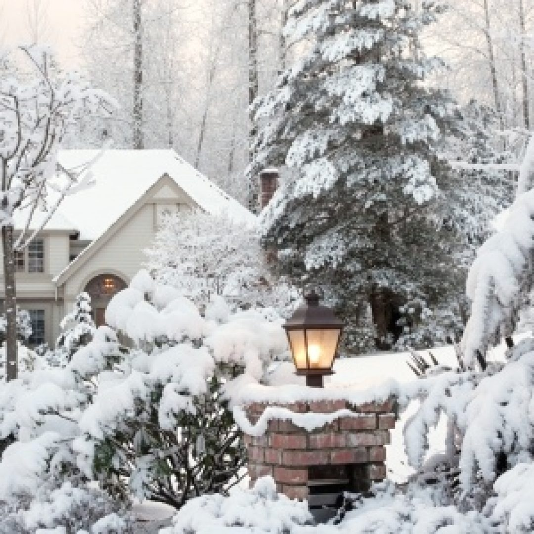 Understanding the Effects of Snow on Your Lawn