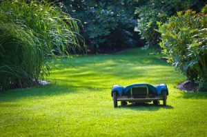 Robomow Might Be the Most Fun Way to Mow Your Lawn