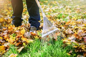 Is Your Lawn Ready for the Fall?