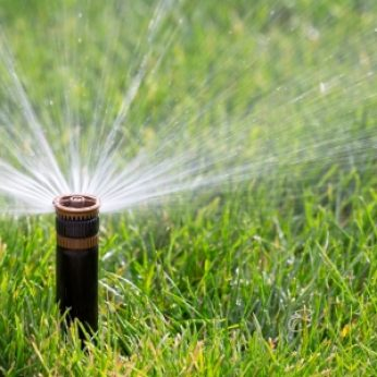 When Should You Start Watering Your Lawn in the Spring?
