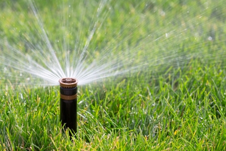 Spring Lawn Care Tips Preparation