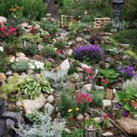 Landscaping Ideas for Steep Slopes