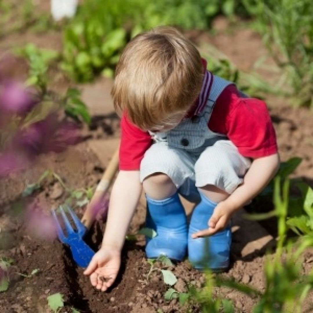 How Gardening Benefits Children