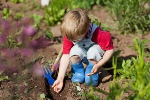 Child Planting a Seed
