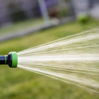 Water Your Lawn in the Morning