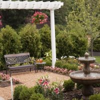 A pergola can add visual appeal to your backyard and it can also provide support for certain plants and flowers as well as add shade to your outdoor space.