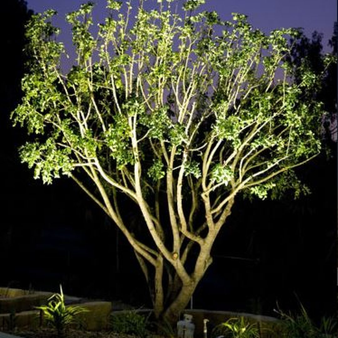 Why it's a Good Idea to Invest in Landscape Lighting