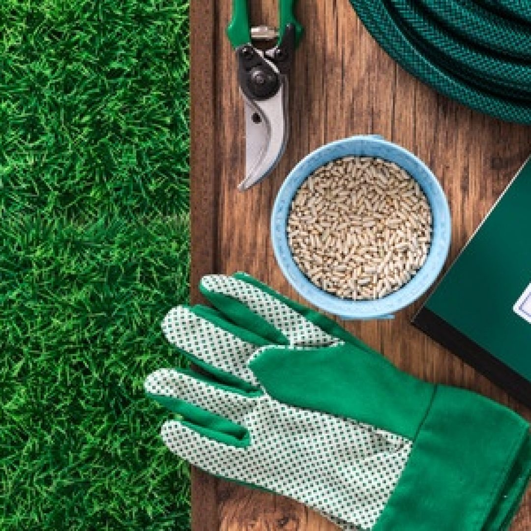 Four Ways to Become a Great Gardener