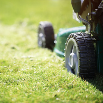 Advice for Buying a Lawn Mower