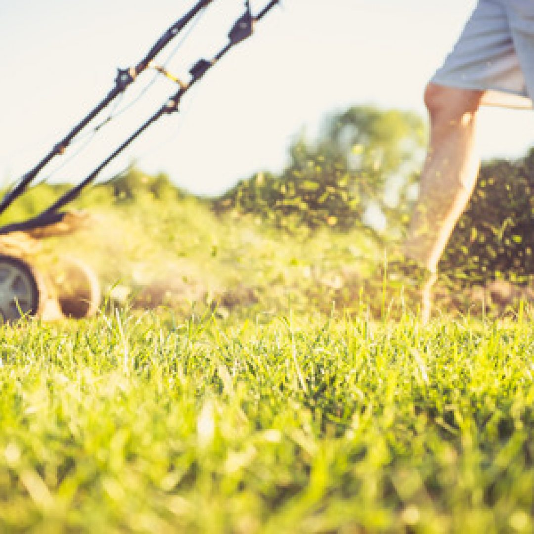 3 Common Mistakes You're Probably Making with Your Lawn Care