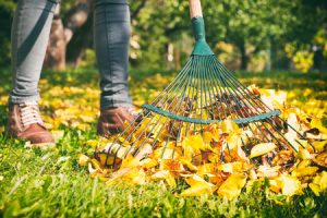 Ideas for Fall Leaves