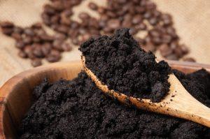 Coffee Grounds in Garden