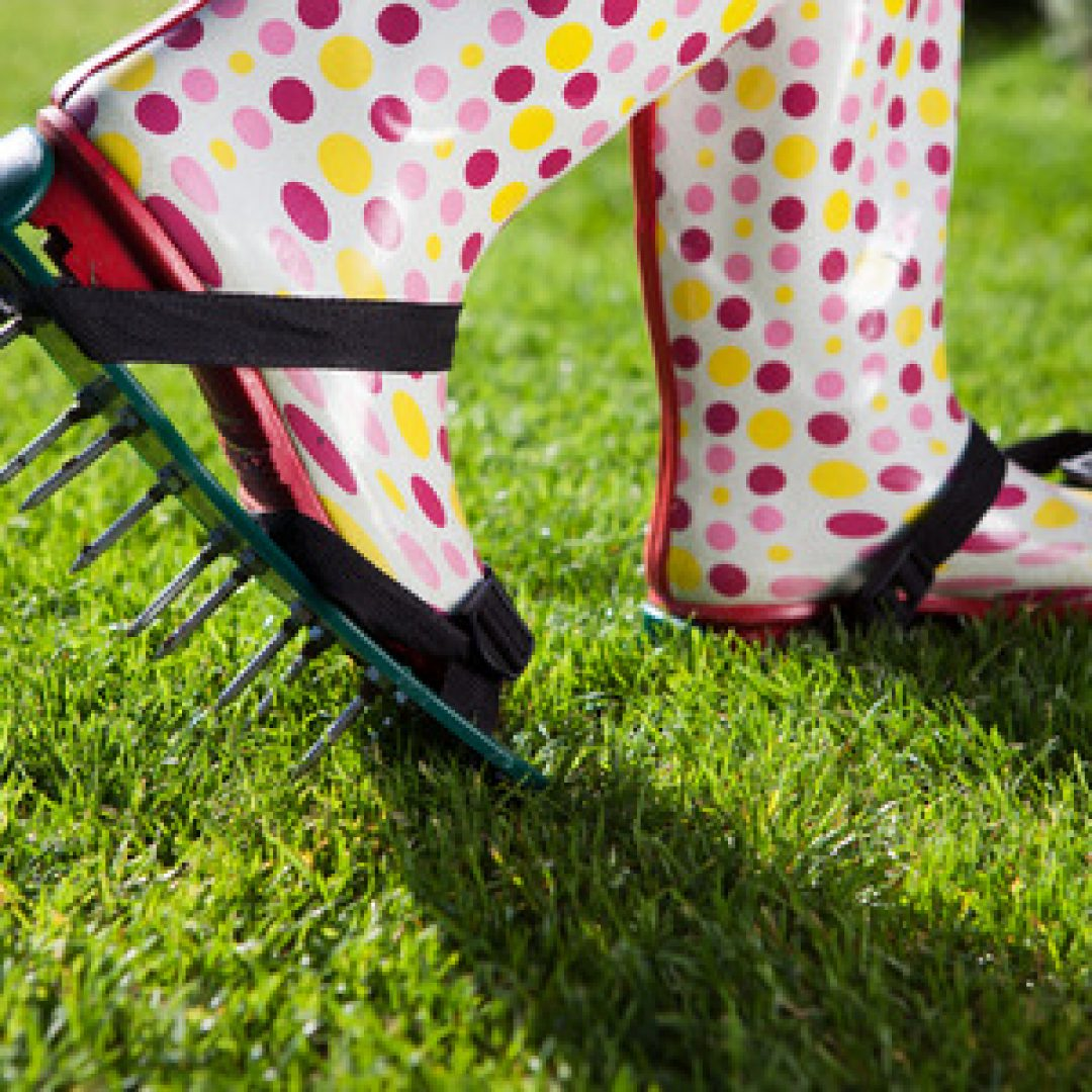 5 Ways to Successfully Aerate Your Lawn