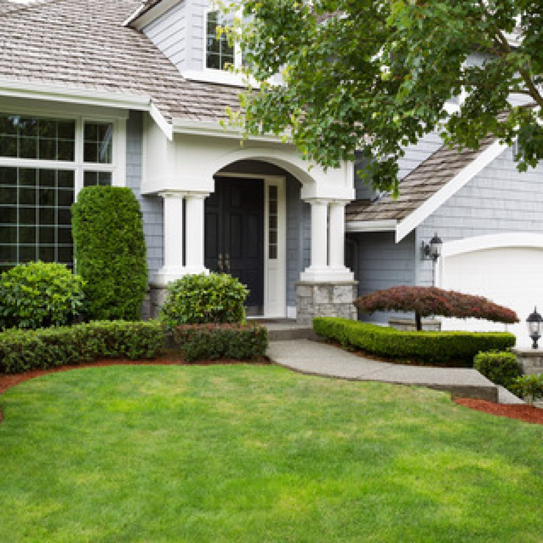 Tips on Keeping Your Lawn Looking Healthy