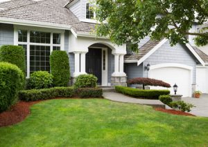 keeping your grass healthy