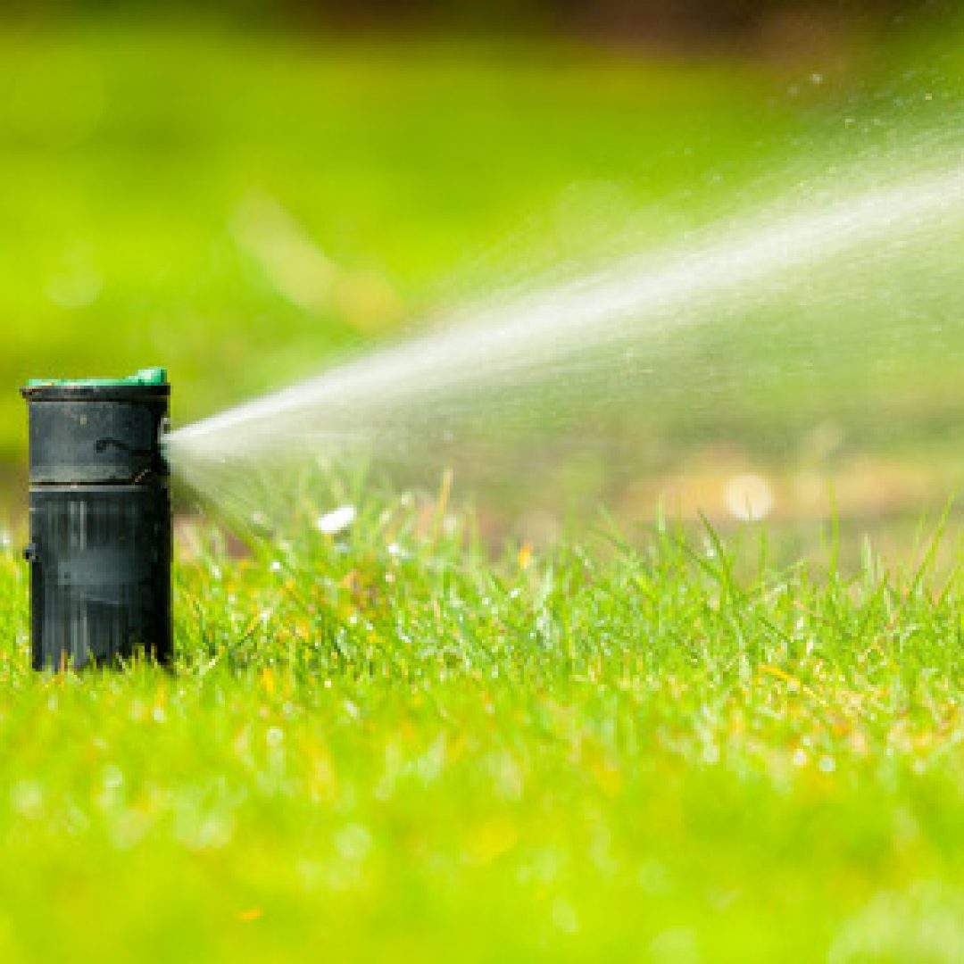 Common Mistakes with a Sprinkler System