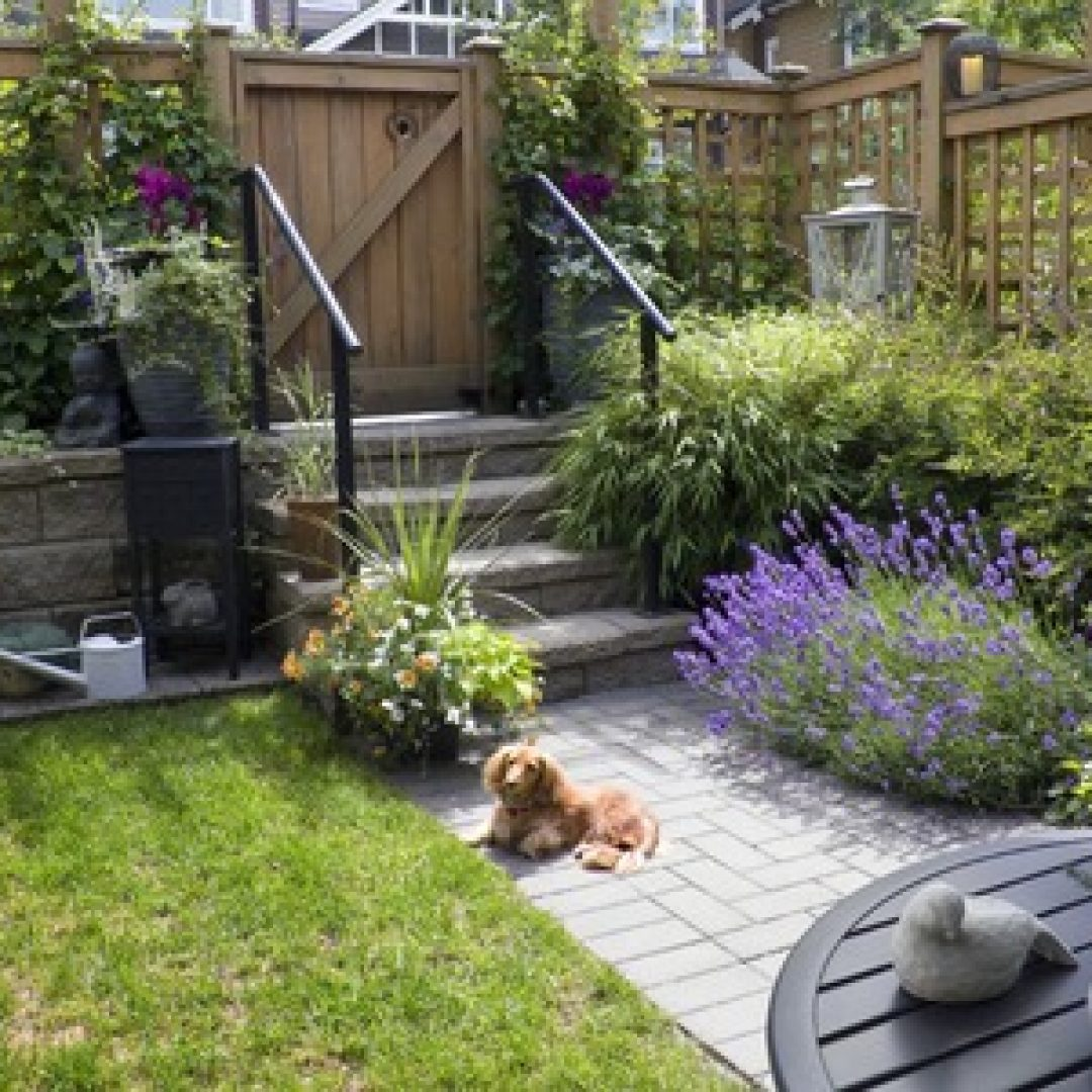 Plan Your Landscaping Ideas Before the Spring
