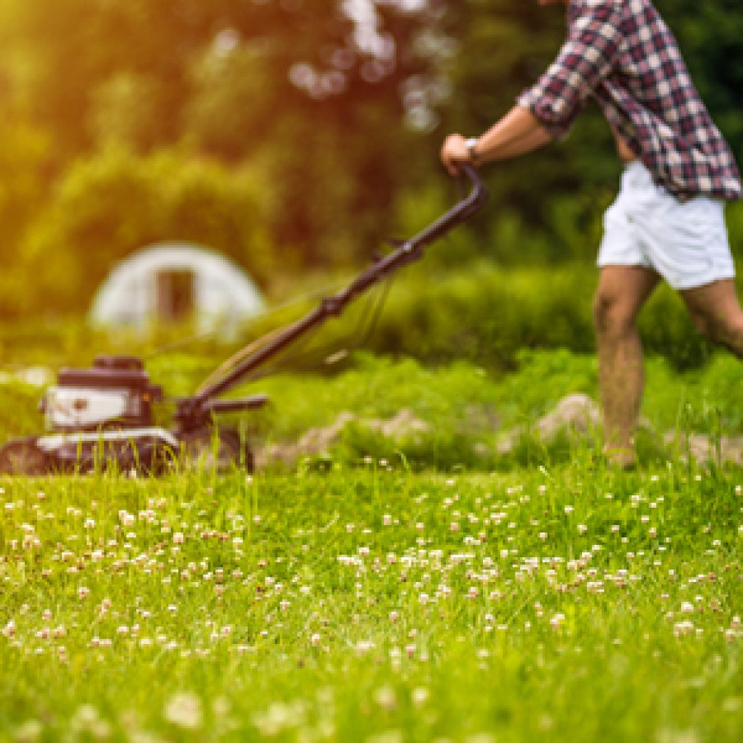 Lawn Care for the Fall Season