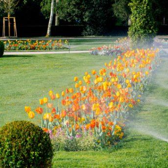 sprinkler system at business park