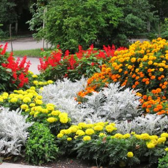 flower beds for landscaping your yard