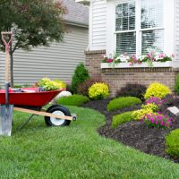 Lawn and landscape maintenance for your yard