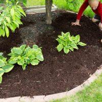 Gardener working on flowerbed