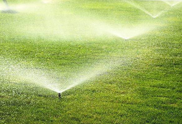 Lawn sprinkler system at business