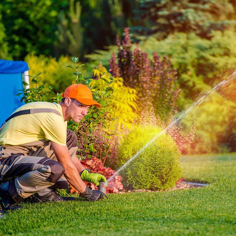 Lawn Sprinkler Installer in Backyard